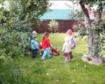 Праздник урожая 2011